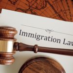 Best Immigration Consultants in India for Visa Services
